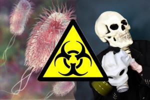 Смертельная инфекция E.coli создана в лаборатории