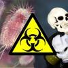 Доказано: смертельная инфекция E.coli создана в лаборатории
