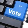 Прямая электронная демократия на повестке дня