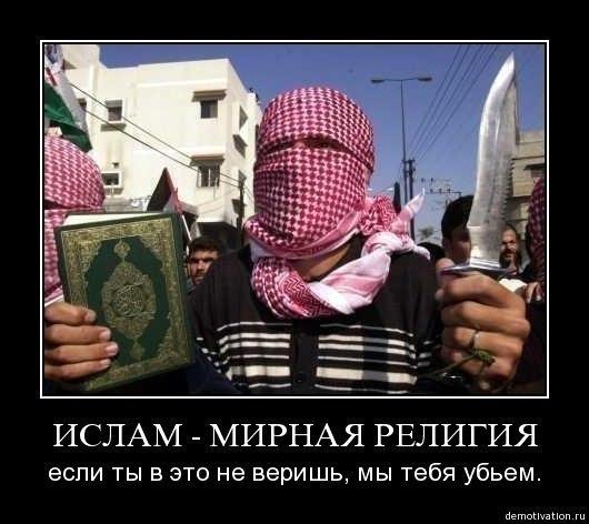 толерантность ислам