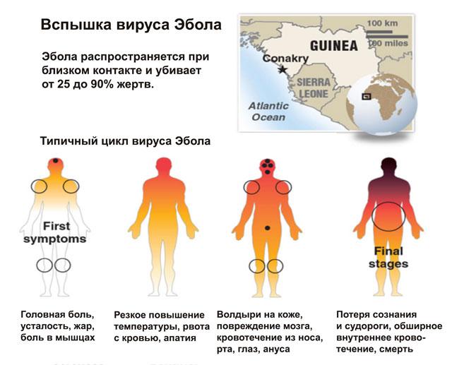 вирус эбола уничтожает мир